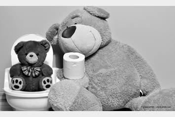 image of teddy bears next to a toilet