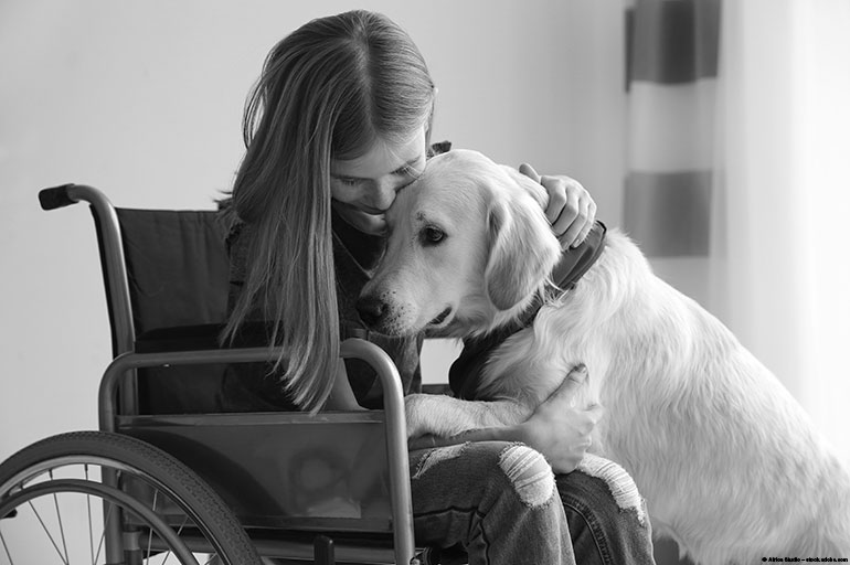 image of a girl in a wheelchair petting a dog