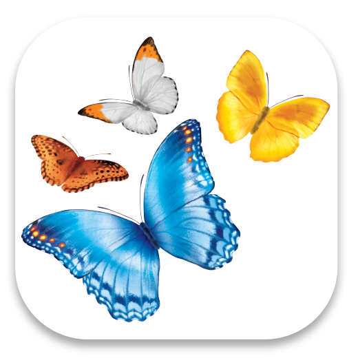 Download the myChildren's app today for all your families needs