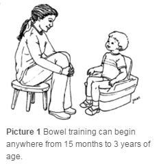Child sitting on training toilet with feet on the ground and back supported.