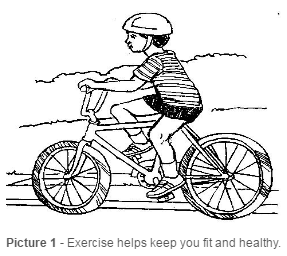 Biking for Exercise