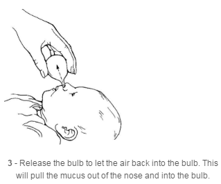 Release the bulb to let the air back into the bulb