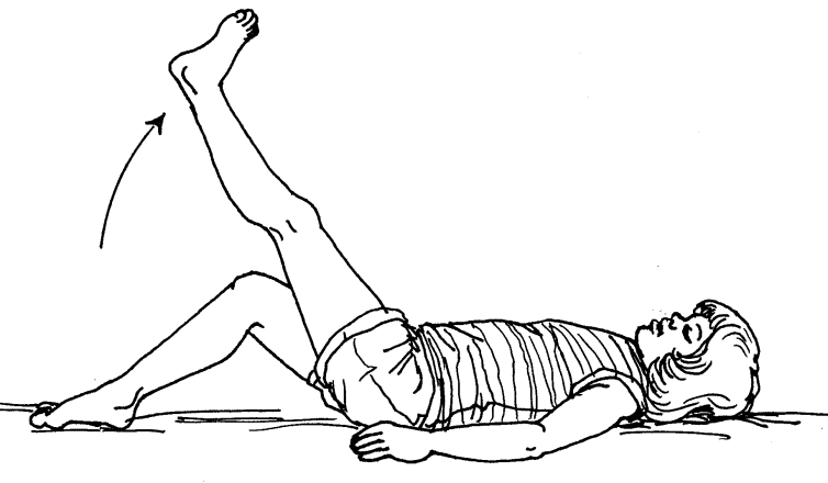 Exercises: Lower Extremities (Active)