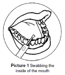 Swabbing the inside of the mouth