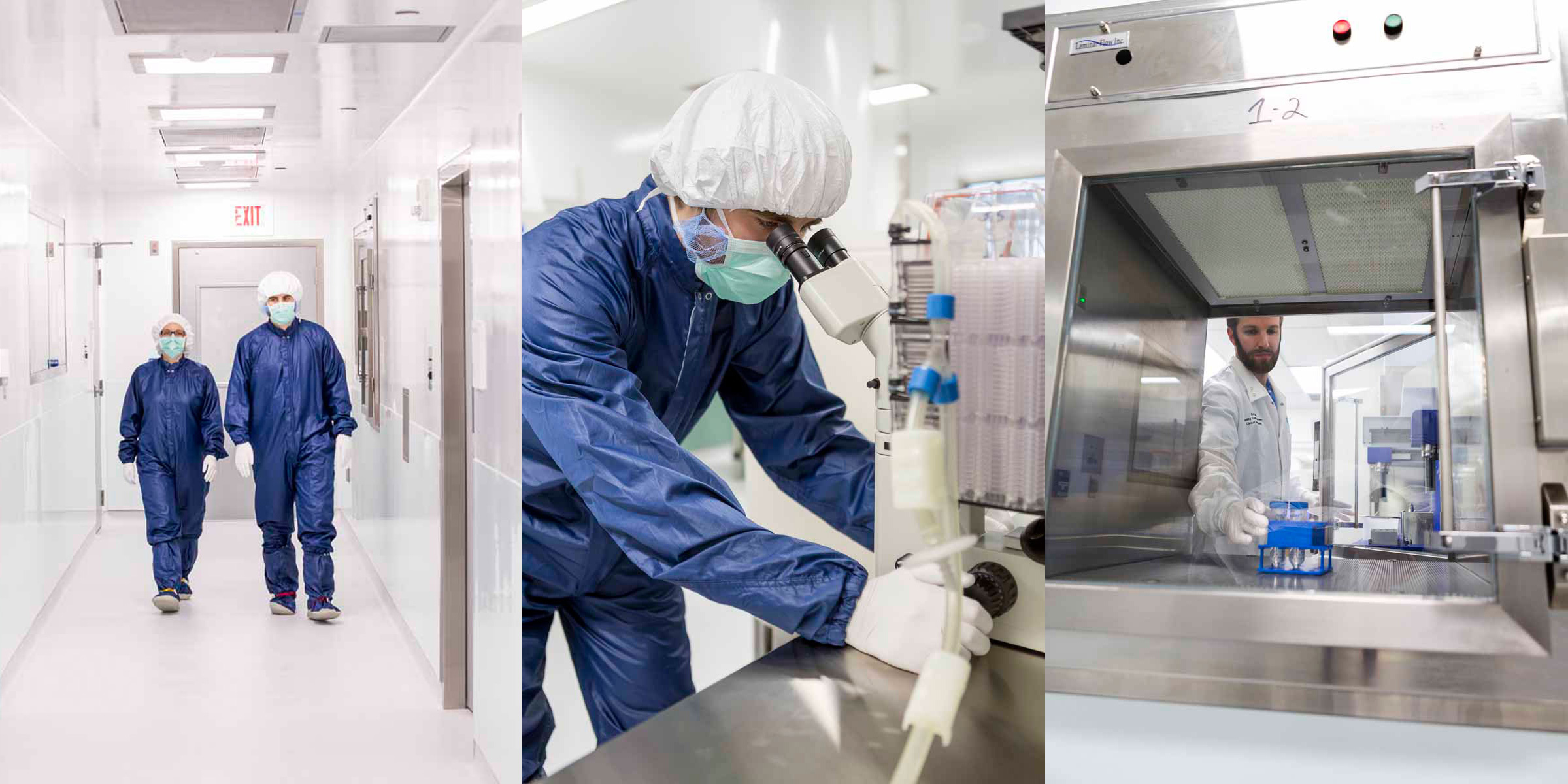 gmp clean room activity